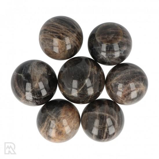 Zwarte Maansteen Bollen