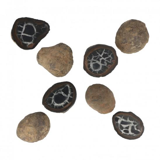 Septarie Geode Paar
