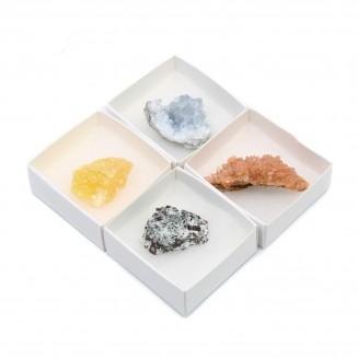 Mix 24 Doos met Mineralen